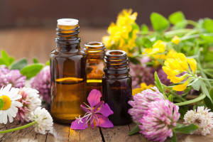 essential oils and medical flowers herbs for holistic healing classes