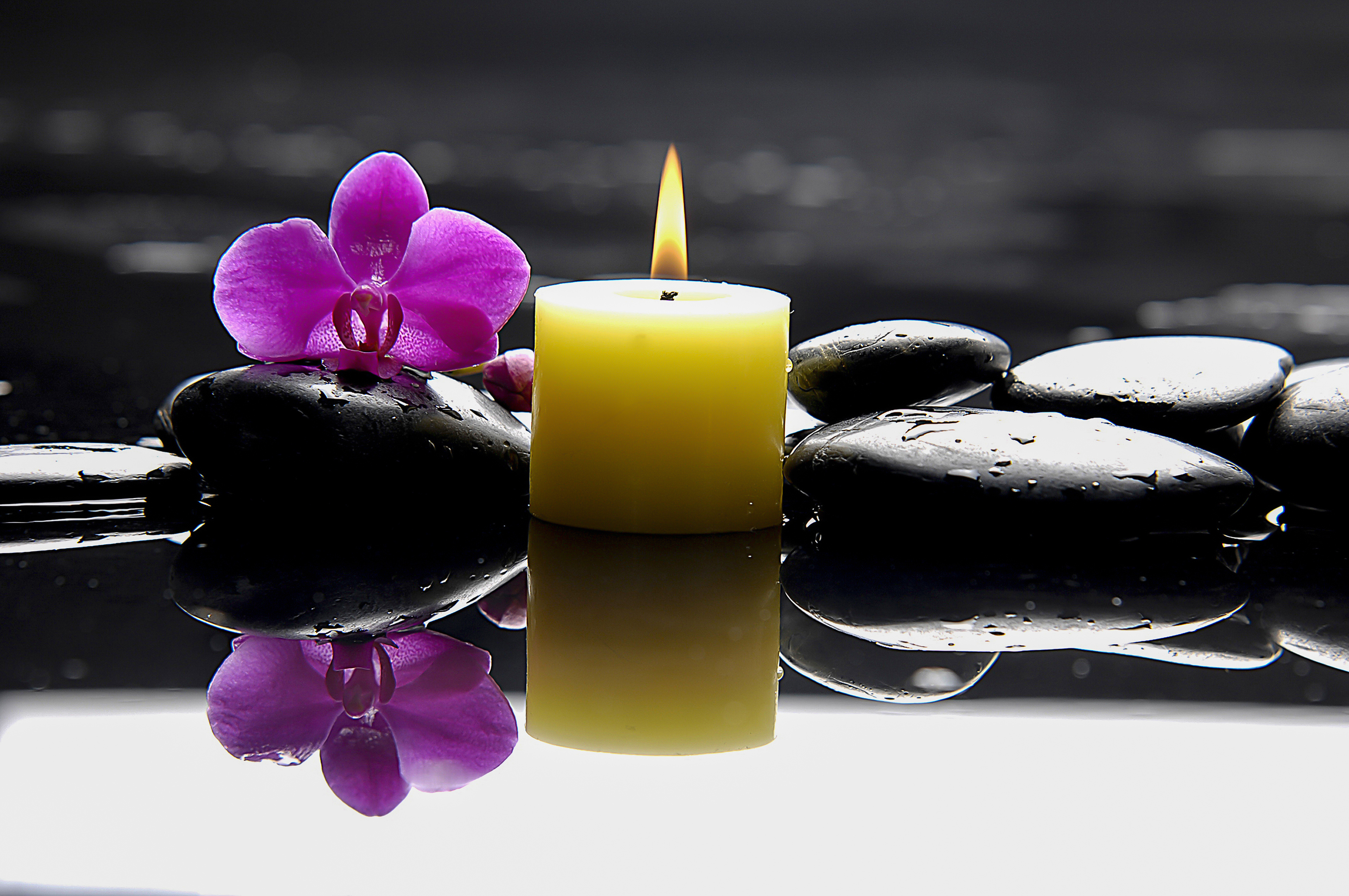 purple orchid and yellow candle on black stones and water