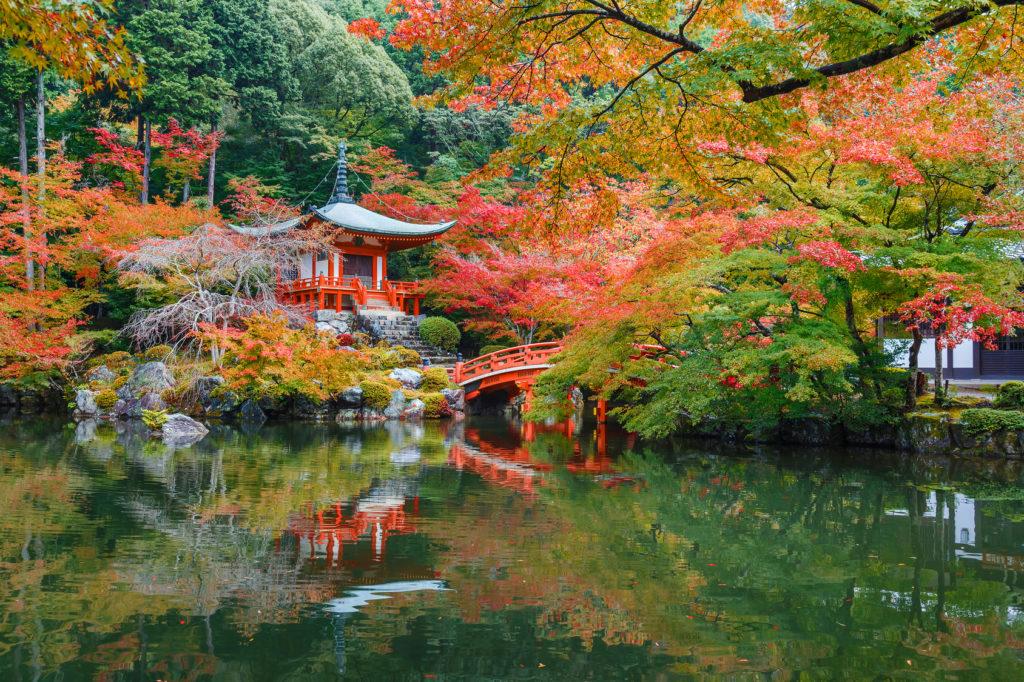 Autumn Leaves Meditation