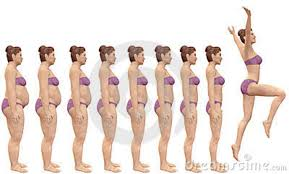female figures weight loss