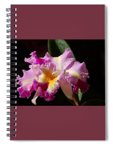 Nancy's Novelty Photos in Pixels Products spiral notebook